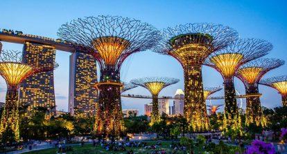 cay-nang-luong-tai-singapore