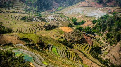 kinh nghiệm du lịch sapa 2020 nên đi đâu chơi? ruộng bậc thang