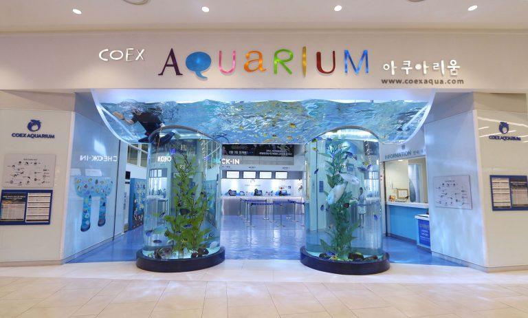 cua-vao-coex-aquarium