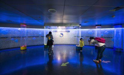 moc-goc-trong-coex-aquarium