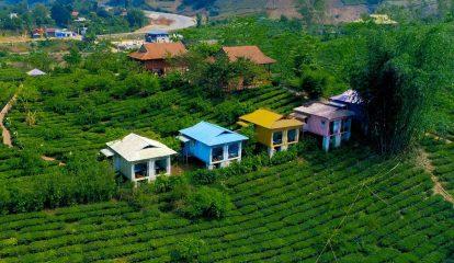 nhung-can-bungalow-day-mau-sac-cua-moc-chau-arena-village