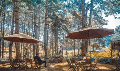 quan-cafe-tai-rung-thong-ban-ang-moc-chau