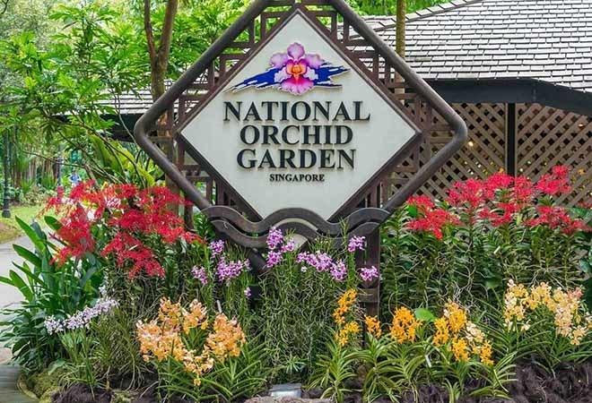 Vé tham quan vườn lan National Orchid Garden
