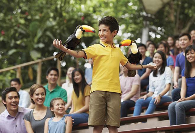 Vé vườn chim Jurong