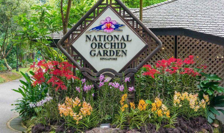 vuon-lan-national-orchid-garden