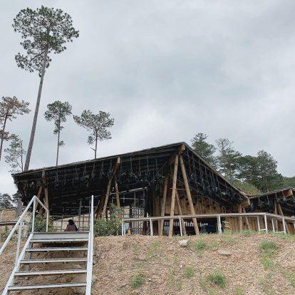 9 quán cà phê cực chất ở đà lạt: the wilder nest