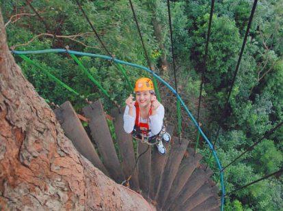 tham gia tour zipline dragon jungle ở chiang mai