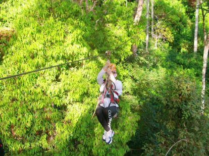 trải nghiệm tour zipline dragon jungle ở chiang mai