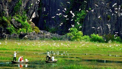 du lịch ninh bình nên đi đâu? vườn chim thung nham
