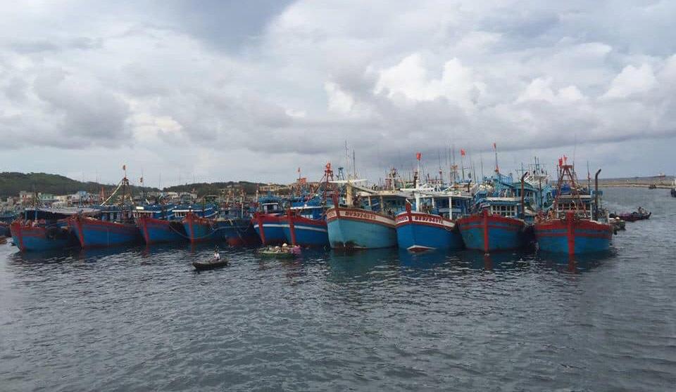 bến thuyền trên đảo bạch long vĩ