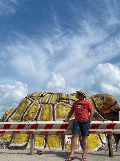 du lịch hòn sơn tự túc nên đi đâu chơi? hòn đá con rùa