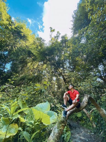 đường rừng đi bàu sấu